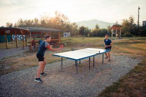 tenis-masa-arinis